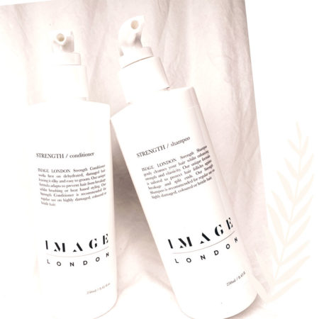 Shampoo and Conditioner Duo 32